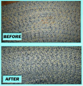 remove pet stains from rug