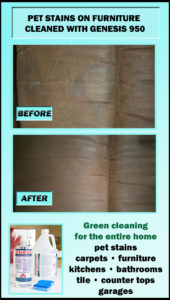 Remove pet odor from furniture