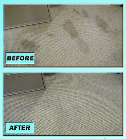 DIY Carpet Cleaning - Remove Old Pet Stains From Carpet