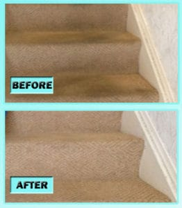 how to clean carpeted stains